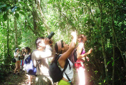 CAHUITA NATIONAL PARK HIKE