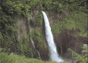 4,000 m.m. of precipitation annually and an irregular topography create impressive falls in the area