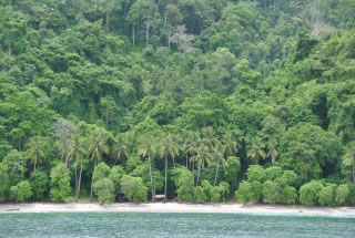 Accessible Only By Boat Just Minutes From Los Suenos Marina PLAYA FANTASIA Is The Most Beautiful Secluded Beach And Snorkel Location In Costa Rica